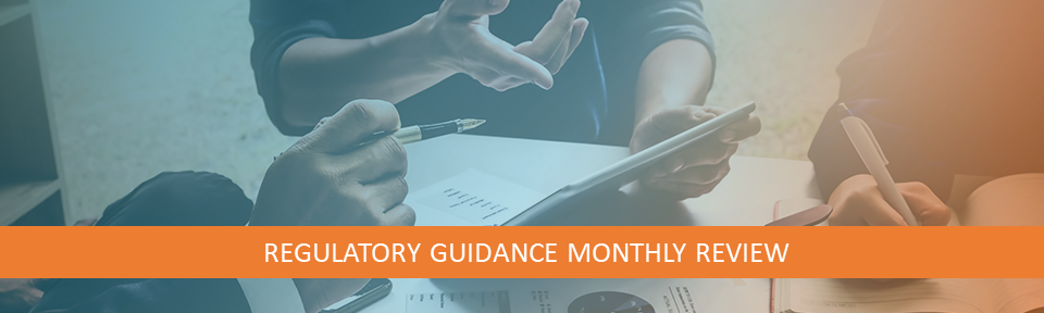 Blog Image-Regulatory Guidanc eMonthly Review_2020-1