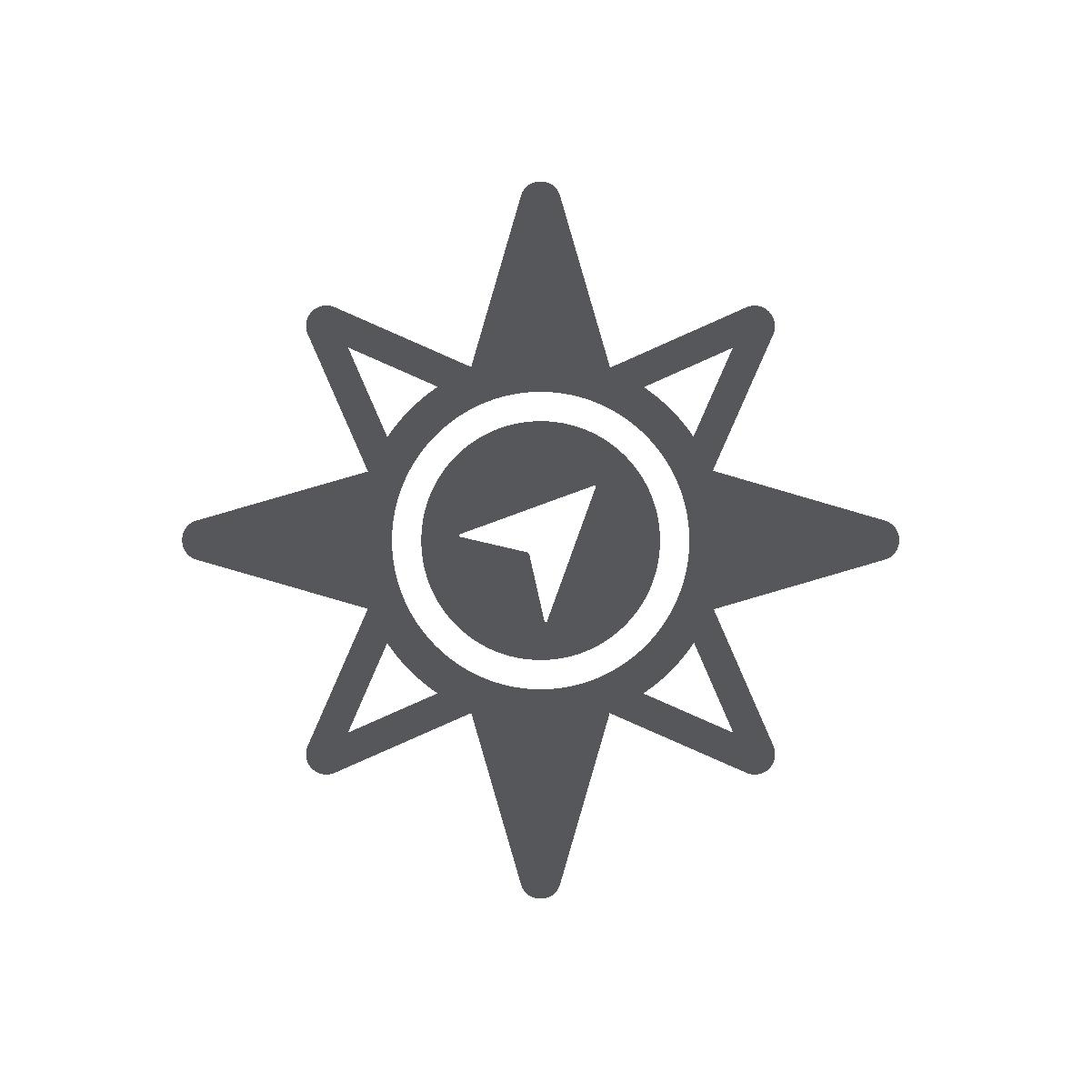 Veristat_icon_strategic consulting