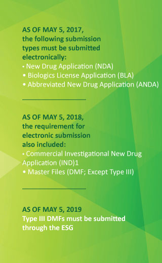 fda electronic submission requirements