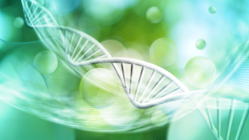 Veristat_SM_Cell and Gene Therapies